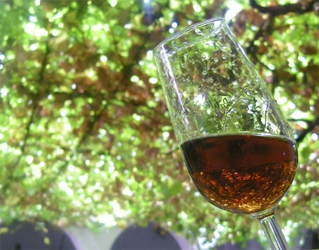 Moscatel, muscat, moscato, is it the same?