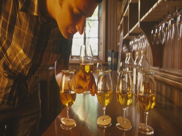 How to taste whisky like an expert (I)