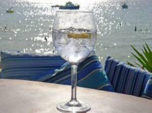The best summer Gin and Tonic