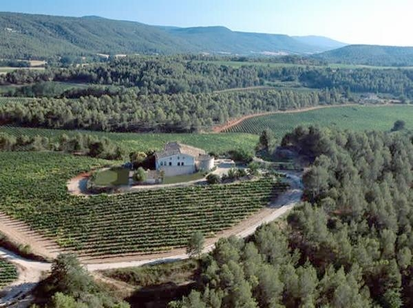 Penedes: Wine tours in Spain
