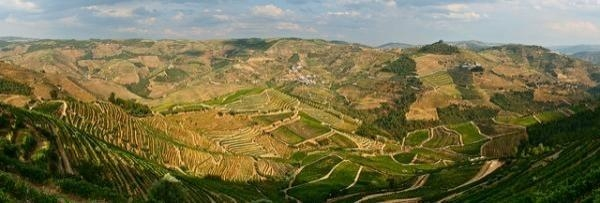 Portugal as a land of wine: Porto and Douro