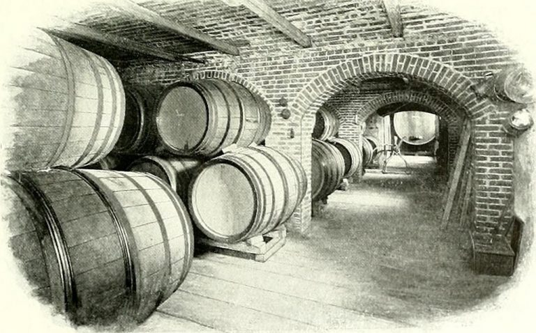 Where in the World Was Wine First Produced?